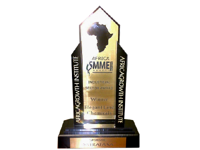 Africa SMME of the year award in 2013